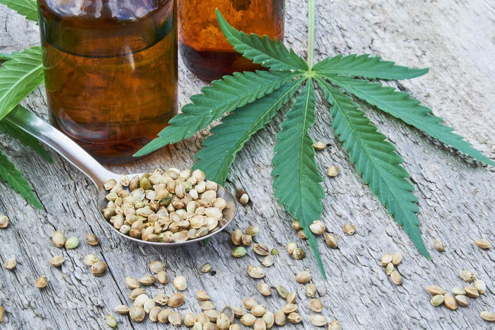 CBD: FROM JELLY BEANS TO BURGERS, EXCITING CANNABIS OIL LAUNCHES TO LOOK OUT FOR IN 2019