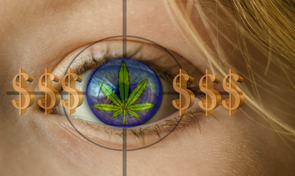 SHOCKING-Cannabis-Consultant-Charges-Money-for-Services-Advice